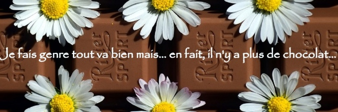 chocolate-2322591_960_720