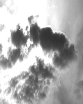 soleil-voile-visoflora-52956