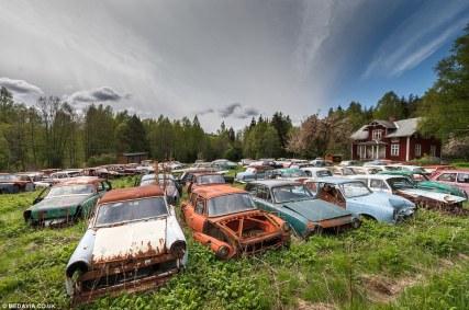 svein-nordrum-bastnaes-car-cemetery-sweden-3