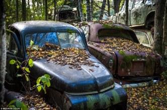 svein-nordrum-bastnaes-car-cemetery-sweden-4